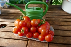 Tomaten